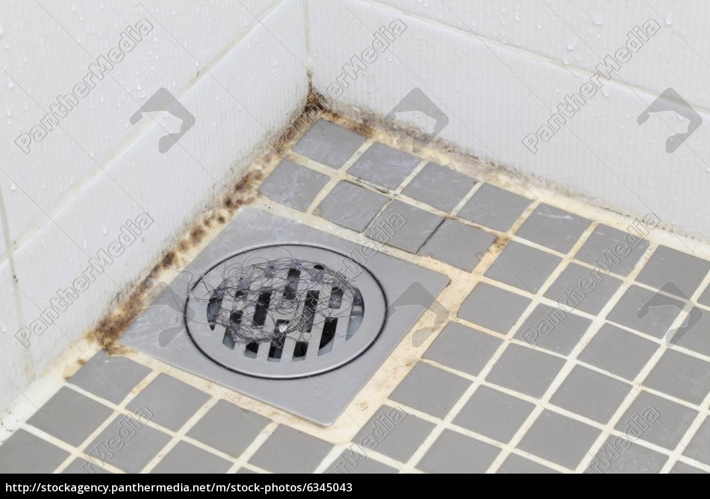 moho, en, el, baño - 6345043
